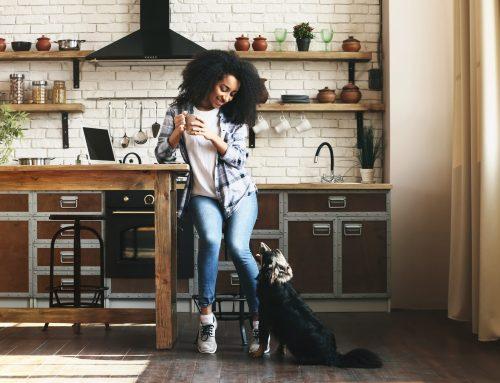 Pet-Friendly Kitchen Cabinet Designs
