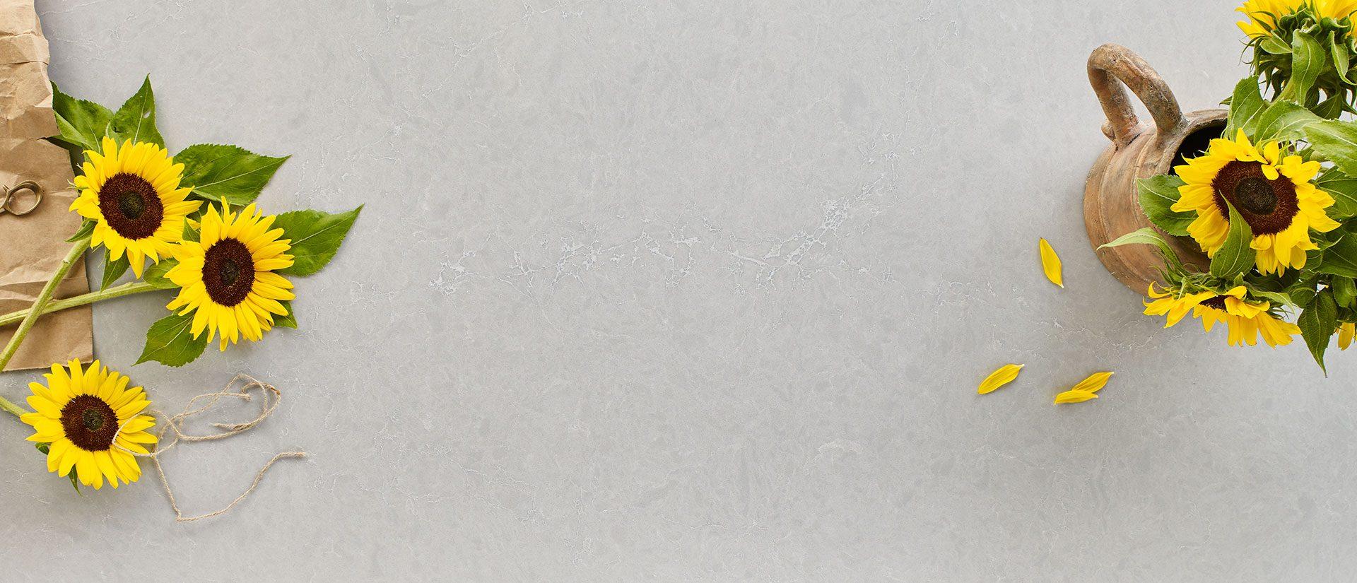 Vena Carbona - Grey Quartz Countertops